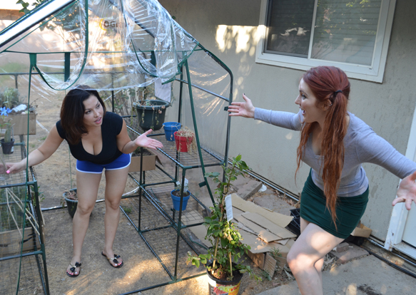 Does Lana Lopez really live in her mom's greenhouse?